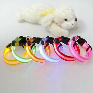 Nylon LED Pet Dog Cat Collar Night Safety Flashing Glow In The Dark Dogs Leash