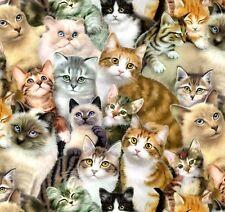 Fat Quarter Petpourri Cats and Kittens Cotton Quilting Fabric Elizabeth Studios