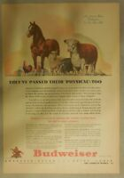 Budweiser Beer Ad: They've Passed Their Physical -Too! from 1940's