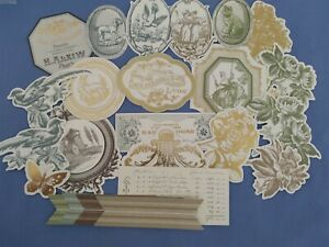 Anna Griffin Fall Toile Embellishments and Stickers Card Making Set of 24