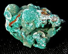 Gem Silica Chrysocolla Striking Botryoidal Rare Nugget 86 Grams Arizona