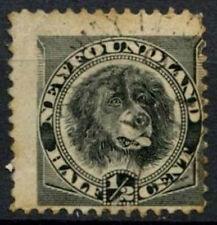 Newfoundland 1894 SG#59, 1/2c Black, Dog Used #D44489