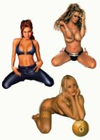 #SEXY #PINUPS Angelina #JennaJameson Pool #Shark 3 VINYL #STICKER/#Decal SET