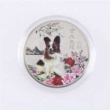 2018 Year Of The Dog Commemorative Collection Coin Craft Keepsake Gift Sliver_LS