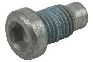 Genuine GM Plug - Cylinder Hd 11610259