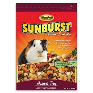 Higgins Gourmet Sunburst GUINEA PIG FOOD MIX 6 lb bag MADE IN USA