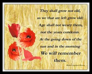 THEY SHALL NOT GROW OLD REMEMBRANCE DAY POPPY POPPIES METAL PLAQUE TIN SIGN R109