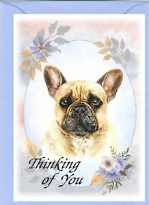 "French Bulldog (4""x 6"") Thinking of You Card (blank inside) by Starprint"