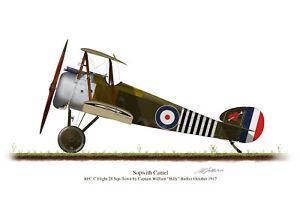 Sopwith Camel 1917 Aircraft Profile Artwork Barker A5 A4 Glossy Print WW1