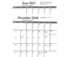 2020 2021 Pocket Calendar Insert-No Cover-Set of 25