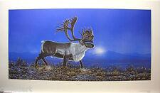 Randy FEHR Caribou LTD art Reindeer RARE mint print Certificate COA Wapiti