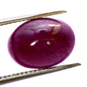 Cabochon  Loose gemstone 10X8MM  untreated unheated Gemstone 21.66 Carat 5piece Certified Natural  Ruby africa
