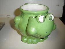 Ganz Bella Casa Frog Mug with Tea Bag Pouch NICE UNIQUE