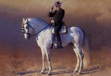 QUALITY CANVAS ART PRINT  * Andalusian Spanish Horse & Rider