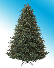 Balsam Hill Classic Blue Spruce Artificial Christmas Tree, 6.5 Ft , Clear NEW @@