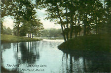The Pond Deering Oaks Portland Maine Postcard No 4006 Printed Germany
