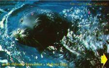 845 SCHEDA TELEFONICA PHONECARD USATA TURKEY MONK SEAL 60