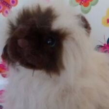 Webkinz Himalayan Cat Hm165 Code Is New - Too Adorable And Retired -