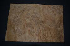 Oak Burl Raw Wood Veneer Sheet 95 X 14 Inches 142nd 5003 2