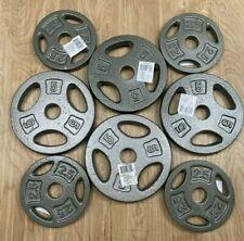 """CAP Cast Iron Standard 1"""" Grip Weight Plates 2.5LB 5LB 10LB 25LB plates"""