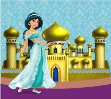 Princess Jasmine Aladdin Birthday Photoshoot Backdrop Background VINYL CLOTH