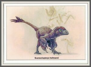 DINOSAUR Scansoriopterygidae CHINA Hebei 辽宁 Liaoning 河北 Prehistoric BIRD card #2