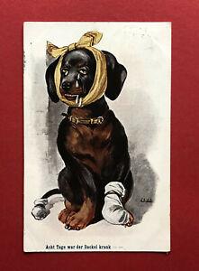 Künstler AK DACKEL 1909 Acht Tage war der Dackel krank Teckel ( 59969