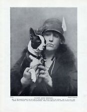 """BOSTON TERRIER ORIGINAL DOG PRINT PAGE 1934 LADY & DOG """"KANDY KID OF CANUCK"""""""