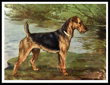 Airedale Terrier Glovely Image Great Vintage Style Dog Print Poster