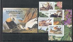 Antigua & Barbuda 920 - 23+ Block 105 Bird - Birds (MNH)