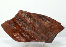 235g Chatoyant Red Tiger's Eye Rough Natural Quartz Crystal Mineral Cab - Africa