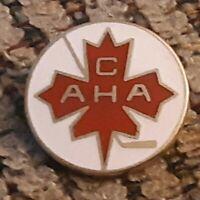 Canada AHA pin badge Amateur Hockey Association OLYMPIC GAMES TEAM pinback 1980
