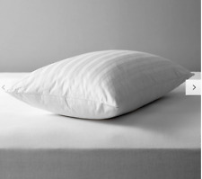 Natural Collection Siberian Goose Feather and Down square Pillow,