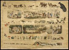 Rare 1853ca - Les 3 regnes de la nature - Planche encyclopédique, scolaire