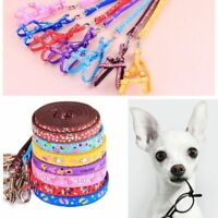 Small Dog Pet Puppy Cat Adjustable Rope Nylon Harness with Lead leash