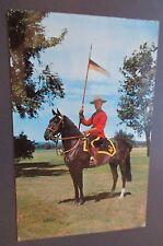 VTG Royal Canadian Mounted Police Horse Uniform Postcard Canada 1960s Ontario