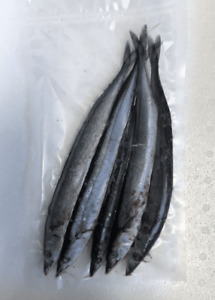 Small Blueys (Pacific Saury) - 10 Packets - Sea/Pike Fishing Frozen Dead Bait