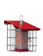 The Nuttery NC0010 Geohouse Compact Peanut/Sunflower Seed Feeder