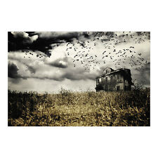 Haunted Farmhouse Backdrop Photo Prop Wall Mural HALLOWEEN HAUNTED HOUSE