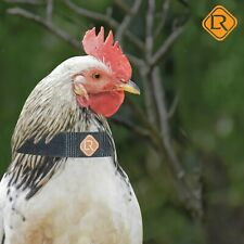 3 pcs no crow collar for roosters chicken neck strap neckband noise free