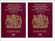 passport  edible cake topper