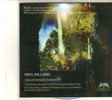 (DT927) Vinyl Williams, Higher Worlds - 2012 DJ CD