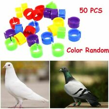 Colorful Bird Duck Hen Chicken Poultry Leg Band Foot Rings Parrot Pigeon Clip