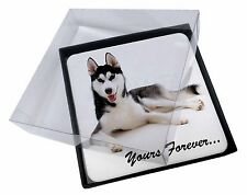4x Siberian Husky 'Yours Forever' Picture Table Coasters Set in Gift B, AD-H55yC