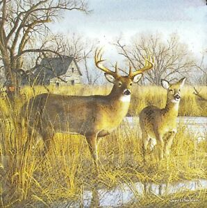 3 x Single SMALL Paper Napkins For Decoupage Craft Tissue Pair Of Deer Elk S180