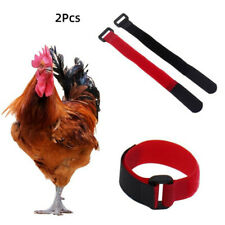 2pcs Nylon No Crow Collars for Roosters Noise Free Belt Collars Poultry Supplies