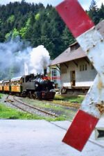 PHOTO  MALLET TANK 105 OF 1918 VINTAGE APPROACHES A LEVEL CROSSING AT SCHÖNAU MA