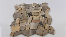Sample Petrified Wood Mosaic Tiles  for Bathroom or Kitchen totally unique