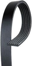 ACDelco 6K763 Serpentine Belt