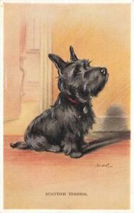Early  SCOTTISH TERRIER    MAC  Lucy Dawson  Dog Postcard